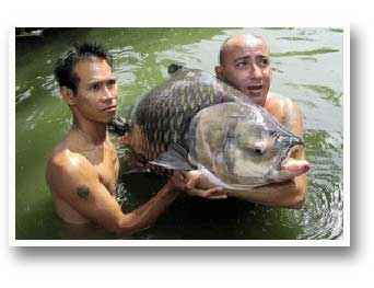 Fishing Adventures Thailand
