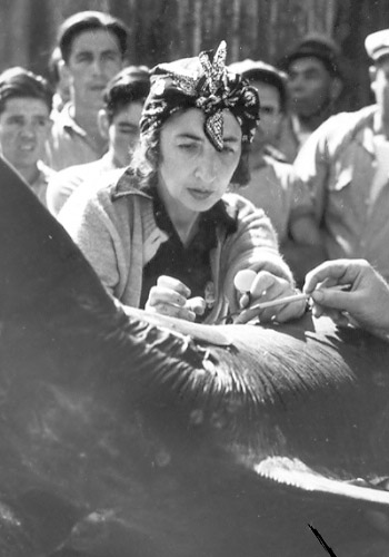 Francesca Lamonte examining a fish