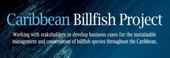 IGFA partners in the FAO Caribbean Billfish Project