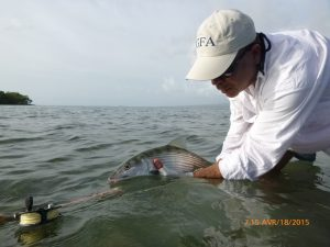 an image of IGFA Rep