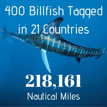 400 Billfish Tagged IGMR stats
