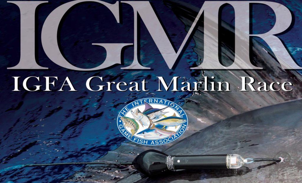 IGFA Great Marlin Race
