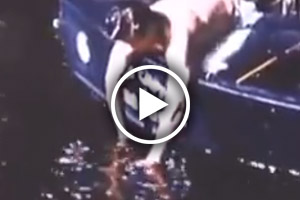 vintage video of catch and release