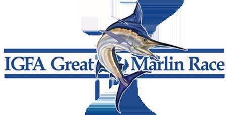 IGMR logo