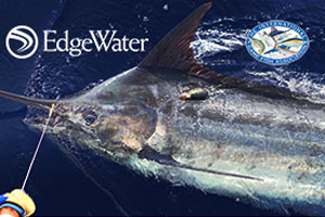 EdgeWater Boat Builders for Billfish