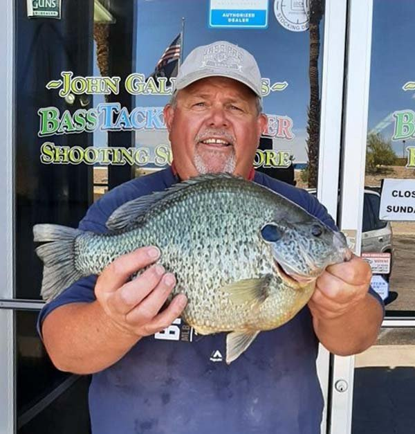 sunfish IGFA world record